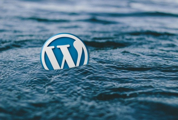 Wordpress Training, Website coaching